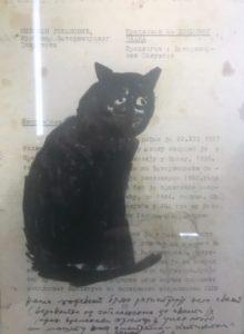 Lubarda - gatto2